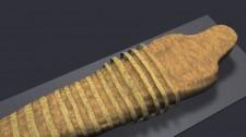 Video: Khám Phá Quá Trình Ướp Xác Kỳ Công Của Người Ai Cập Cổ Đại