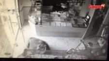 Trâu điên xông vào tiệm vàng