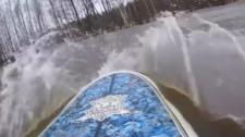 Video: Lướt Ván Trong Khu Rừng Ngập Nước Ở Nga
