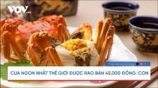 Cua Ngon Nhất Thế Giới Được Rao Bán 45.000 Đồng/con
