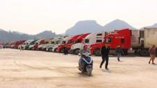 Hàng Trăm Container Thanh Long Ùn Ứ Tại Cửa Khẩu Vì Dịch Virus Corona